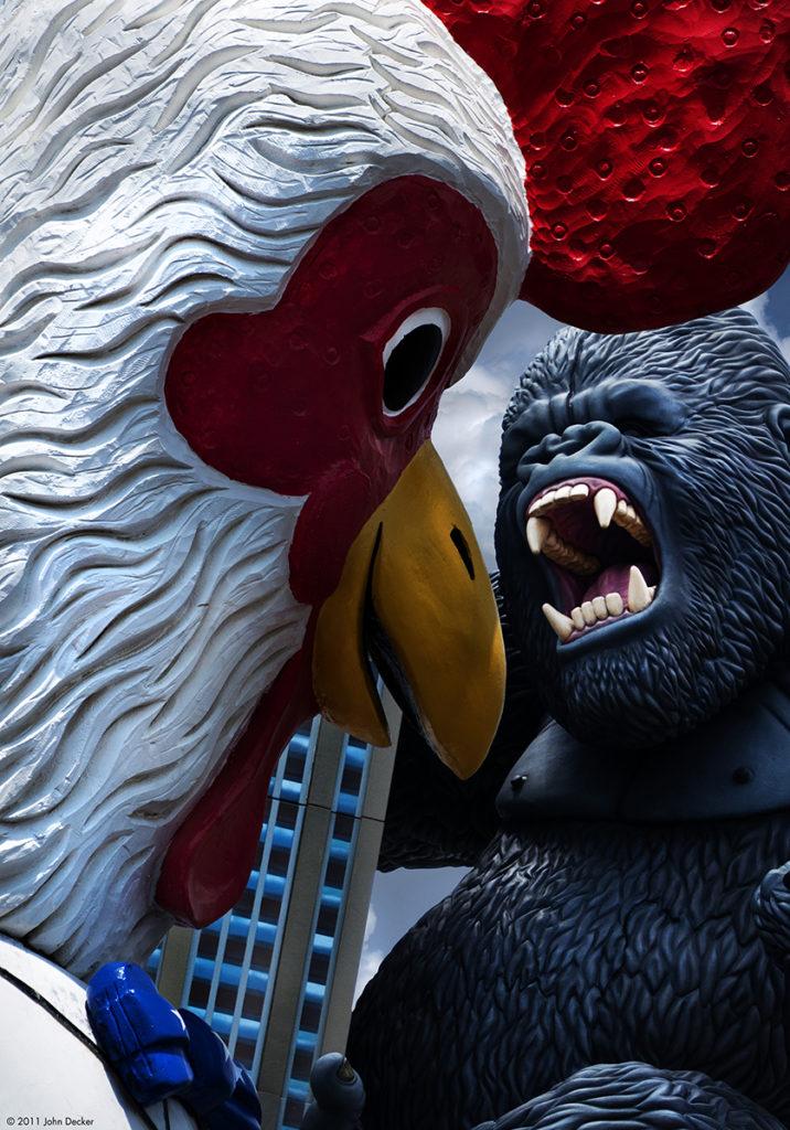 Chicken vs King Kong Photography