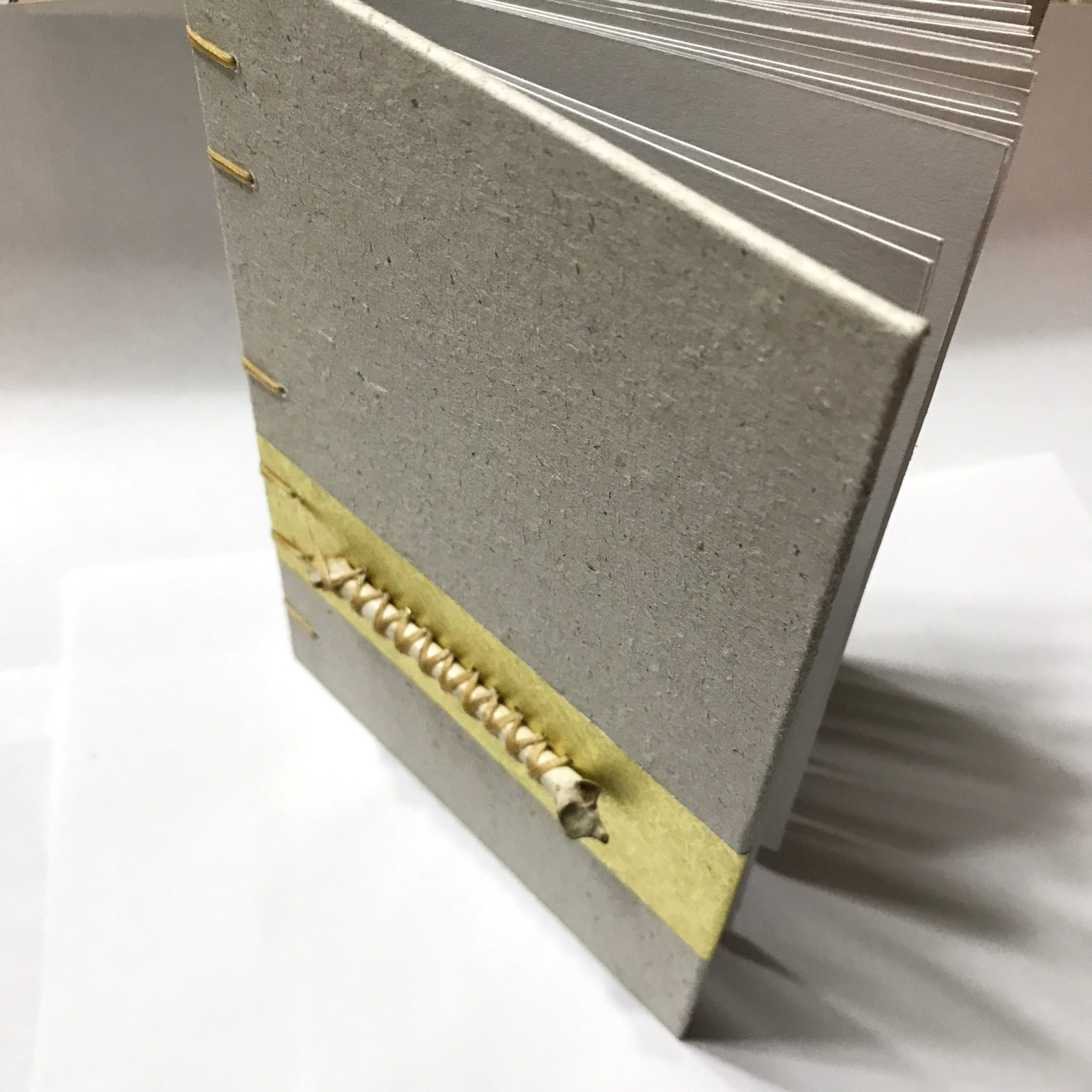 Full view of sketchbook with bone stitched on cover